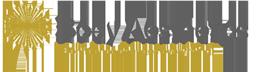Body Aesthetics Лого